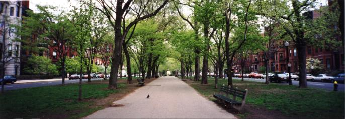 BBH - Comm Ave Mall - Panorama